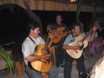 Guitarristas, Equipo Palmichal