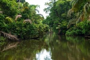 Viajes a Costa Rica: Tortuguero